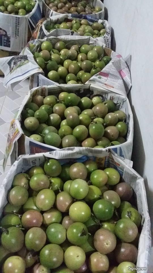 passion fruit vietnam