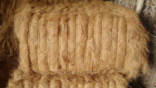 coconut fiber for export