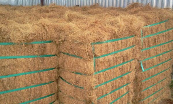 coconut-fiber-vietnam